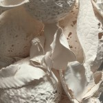 Detail from Fossil Jar 1 3D assemblage,  porcelain paper clay slip