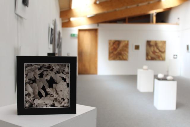 exhibition 2017-6