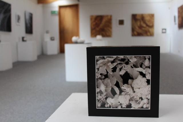 exhibition 2017-9